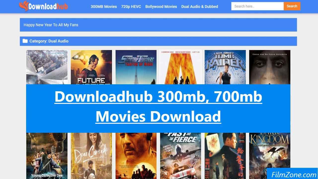DownloadHub 300mb New Bollywood Hindi Movies Download
